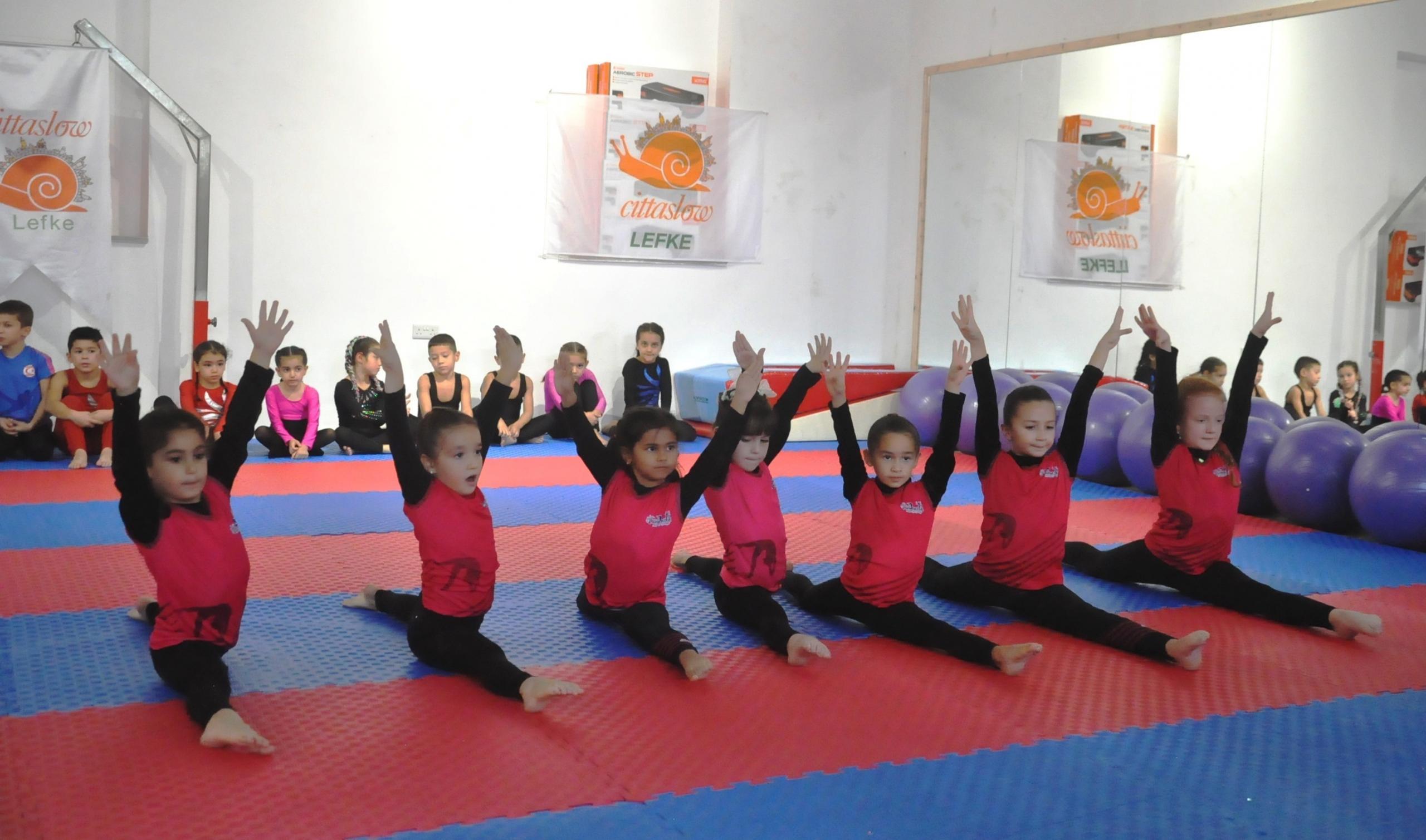 Cimnastikçiler, Şehitler anısına yarışacak